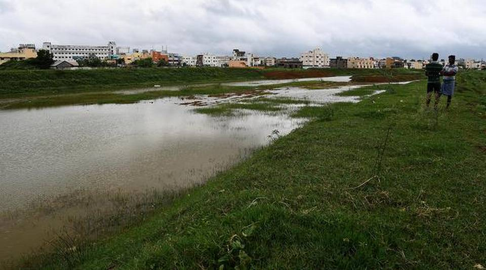 Neglected waterbodies spring to life